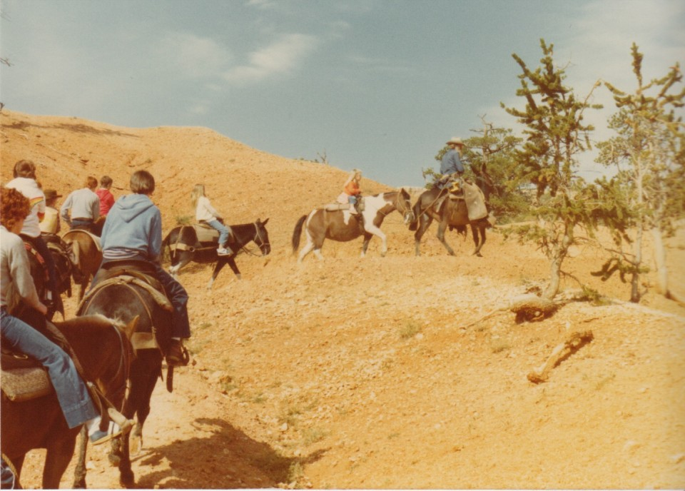 Horseback riding in the Grand Canyon.