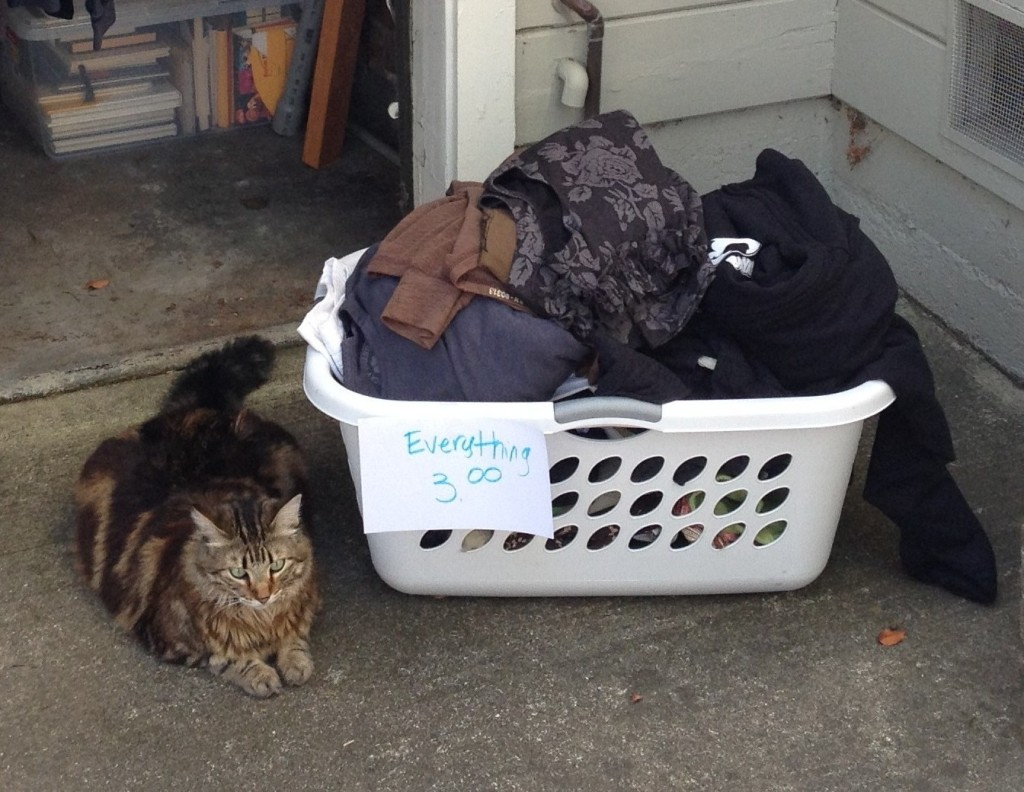 The most popular thing at our garage sale was our 19 pound Maine Coon Nala.