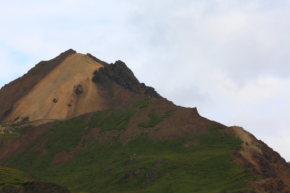 Denali Park was founded to protect the Dall Sheep, they are the two little white dots on the mountain, see if you can find them.