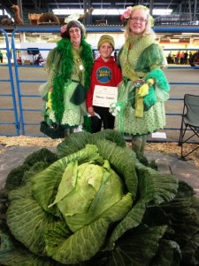 Here was the giant cabbage winner (I stole this of the state fair web site)