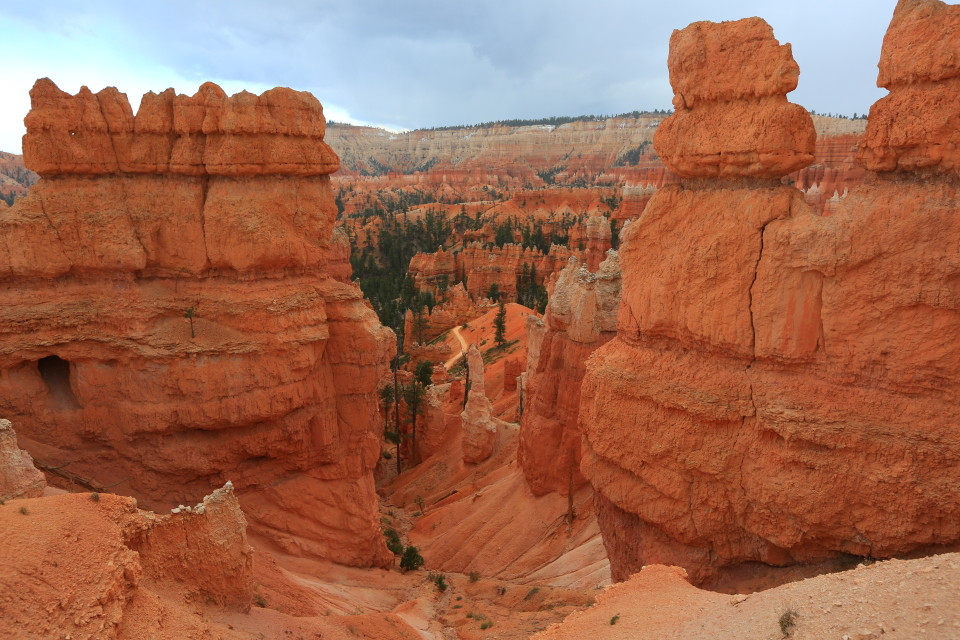 The hoodoos of Bryce, they are really stunning.
