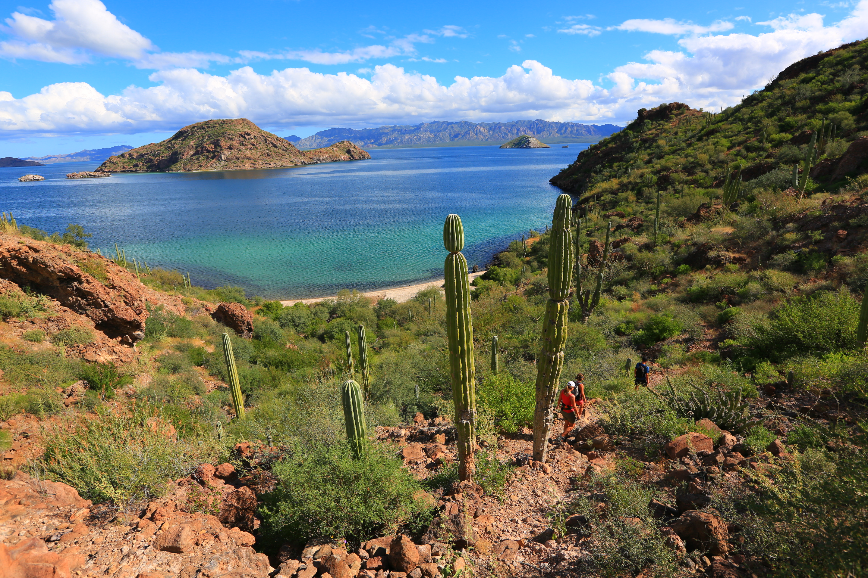 Hiking in Baja- not as easy as it would seem - Song of the ...