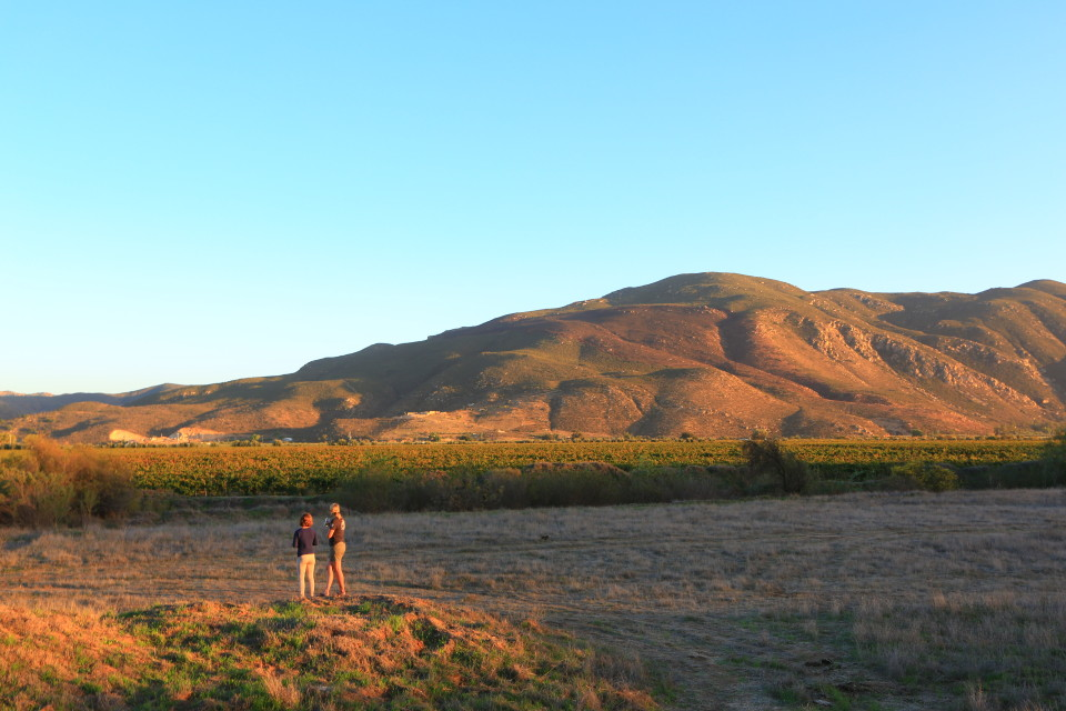 Ashley and I at our campsite enjoying the sun setting over the grapes.