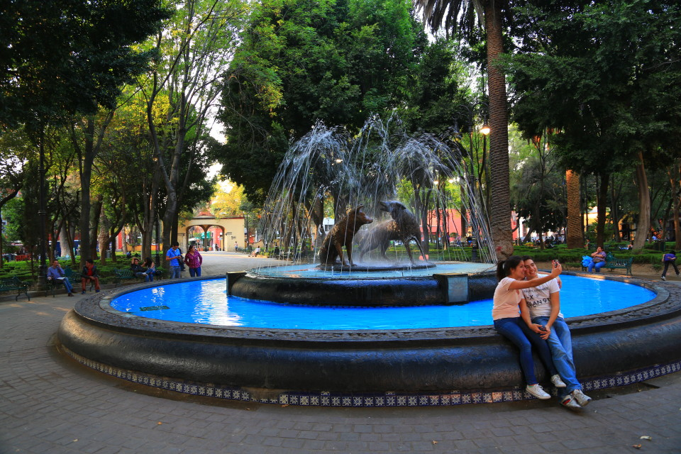 Plaza Hidalgo and the famous coyote fountain where the neighborhood gets its name.