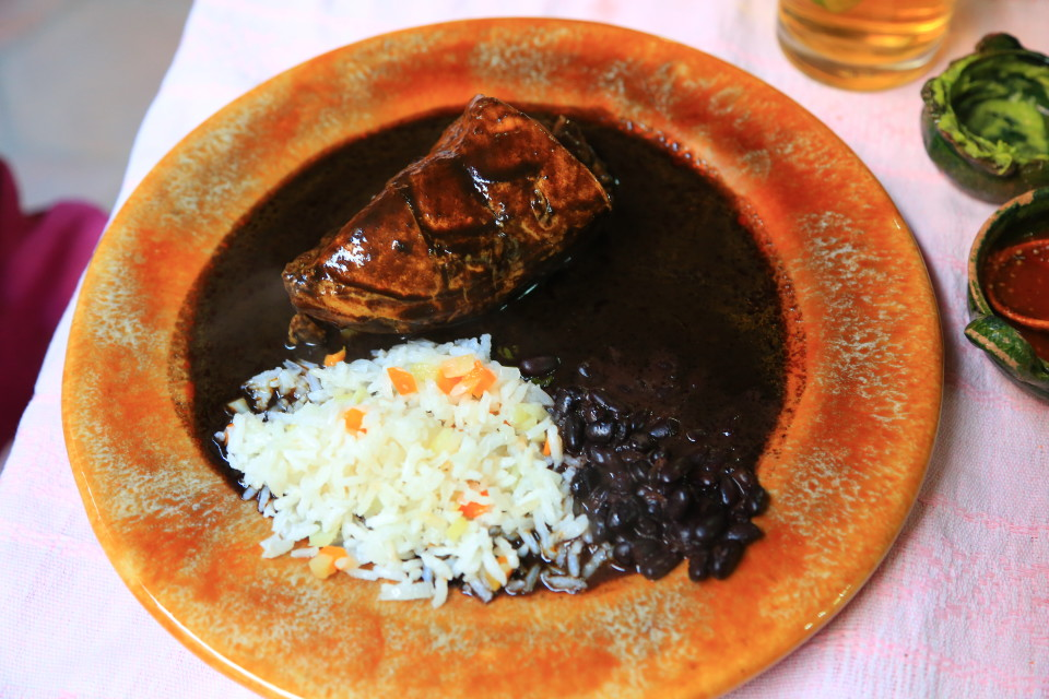 My Mom got the mole negro and it was our favorite dish. Very complex mole with hints of bitter chocolate.