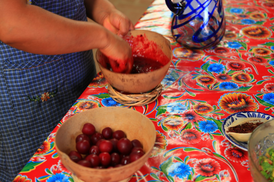 Renya bought the small plums I loved in the market and made a fruit agua with them, really good. We also ate our first chipolines here (fried grasshoppers) she told us the small ones tasted best. They were crunchy....