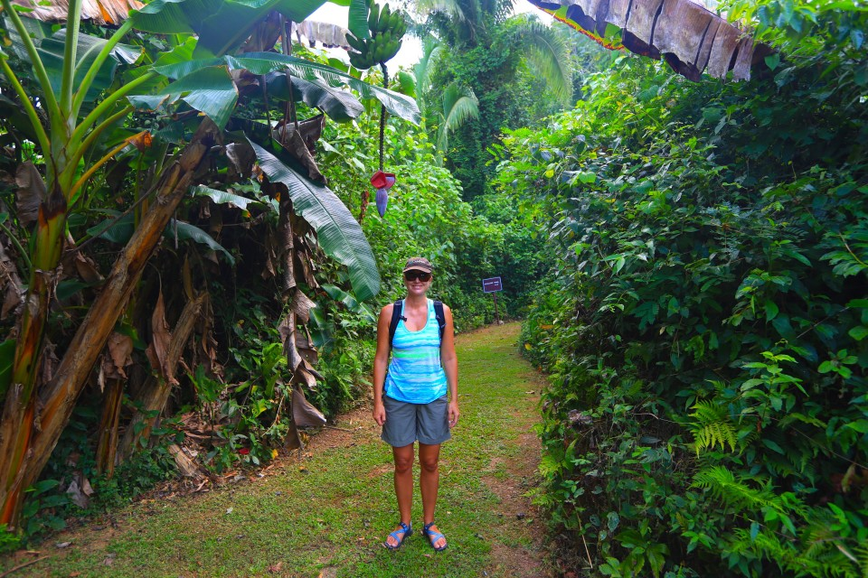 This was at the start of the hike, so happy posing under the banana flower. I had no idea of the torture ahead.