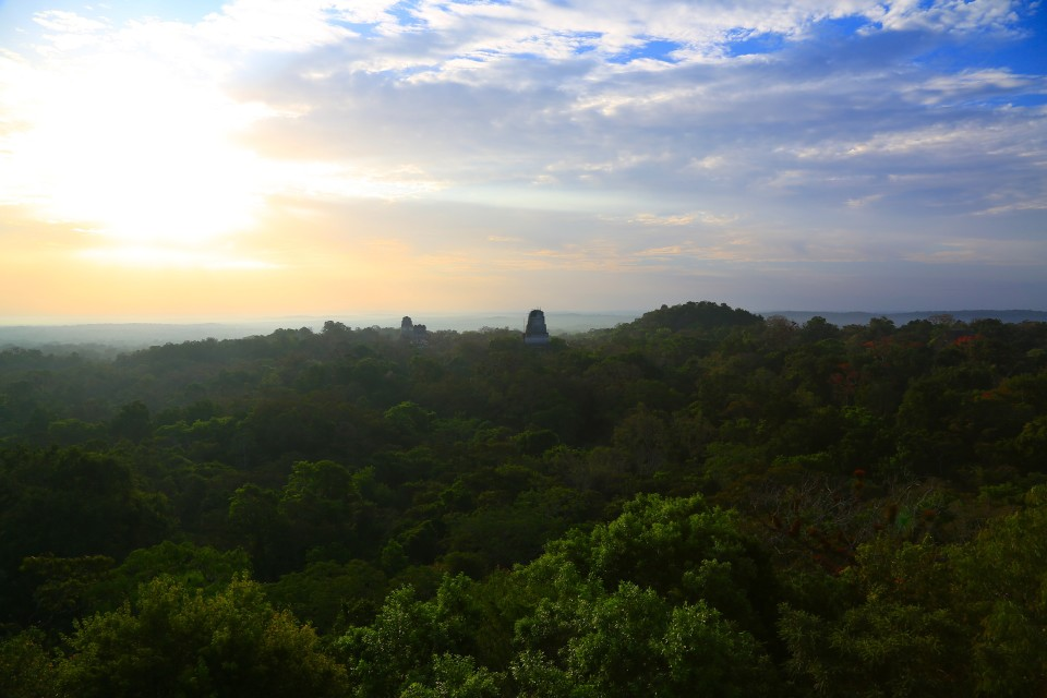 Sunrise over the forest, view from temple VI.