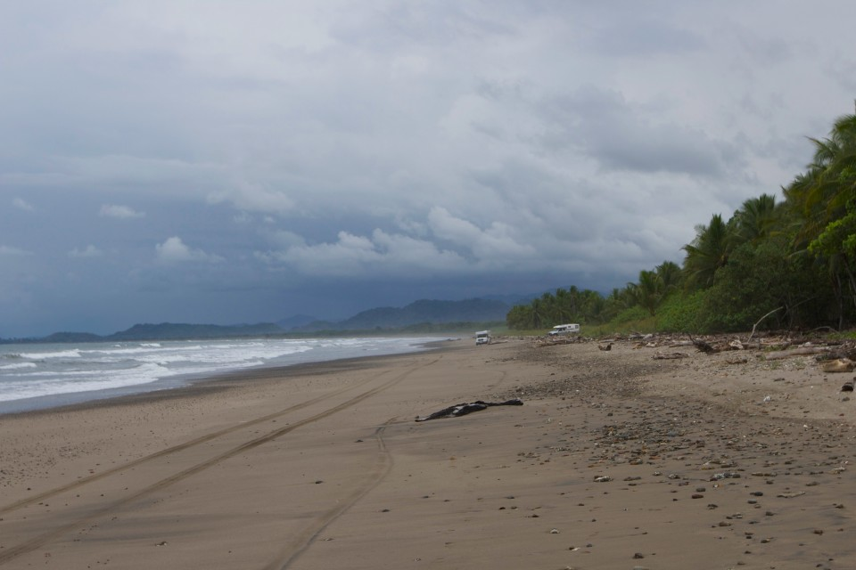 We guide our rigs from the jungle road onto the beach road.