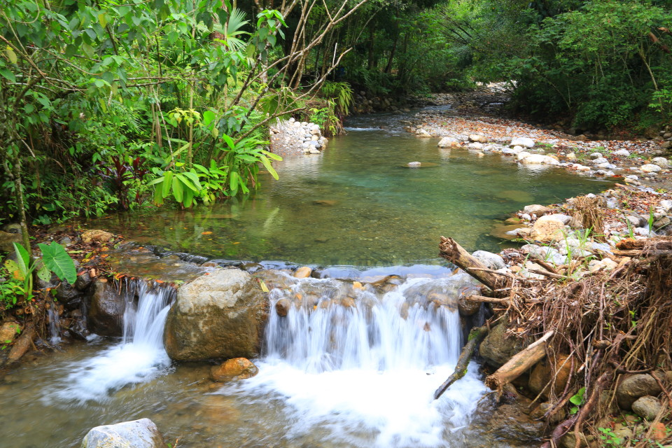 The river at the finca.