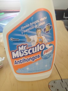 If you have any problems south of the border with mold, look for this, it works really well.