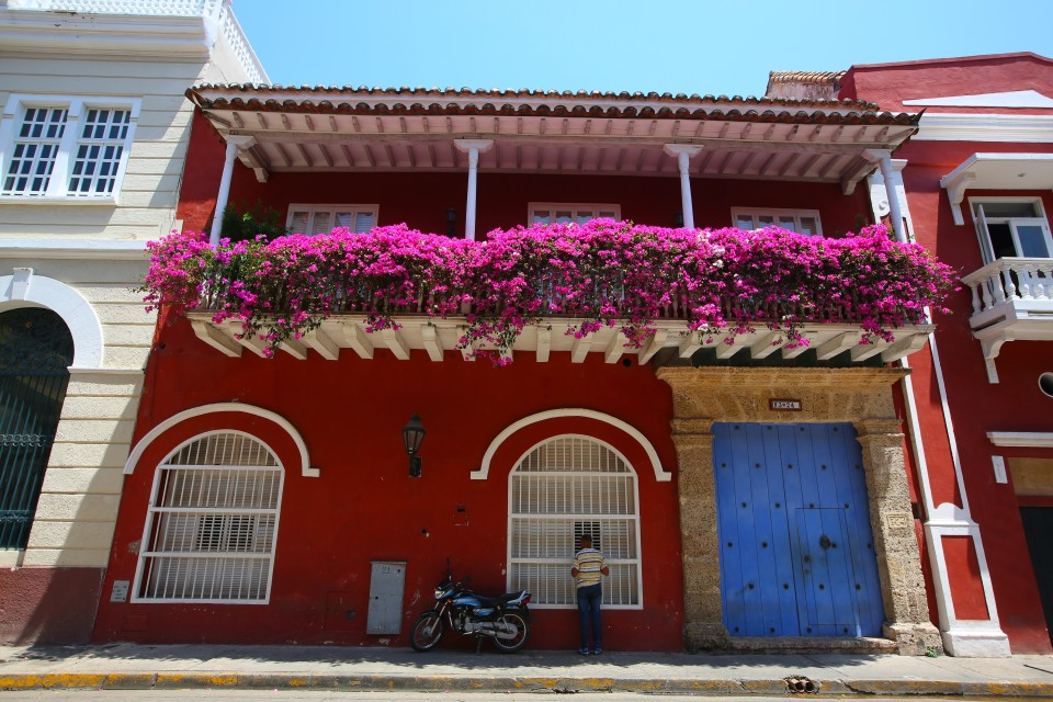 The colors were so vibrant in the punishing tropical sun.