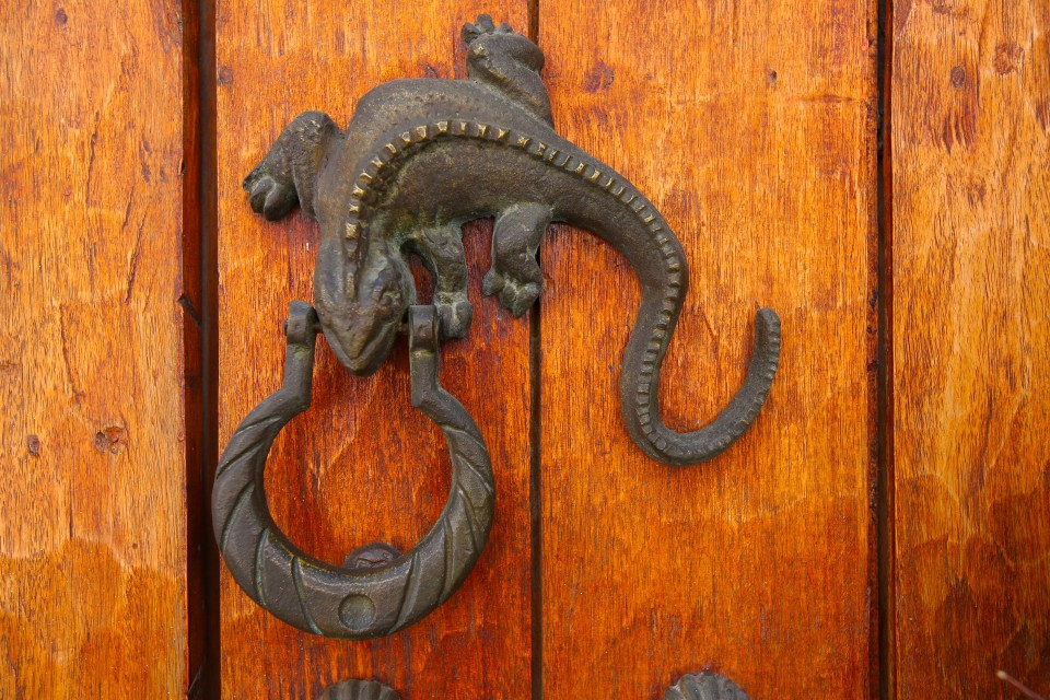 The city is famous for its door knockers. this one was one of my favorites.