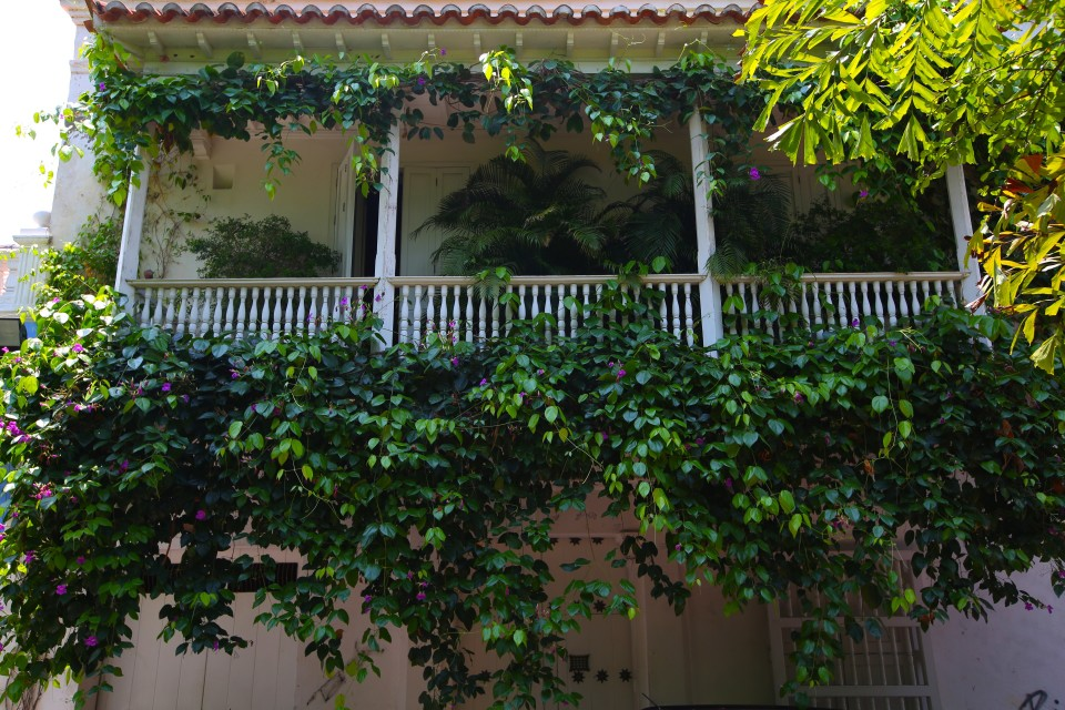 In Plaza Fernández de Madrid, this balcony was the inspiration for the Park of the Evangels in Love in the Time of Cholera, where Fermina would stand on the balcony and Florentino would pine for her.