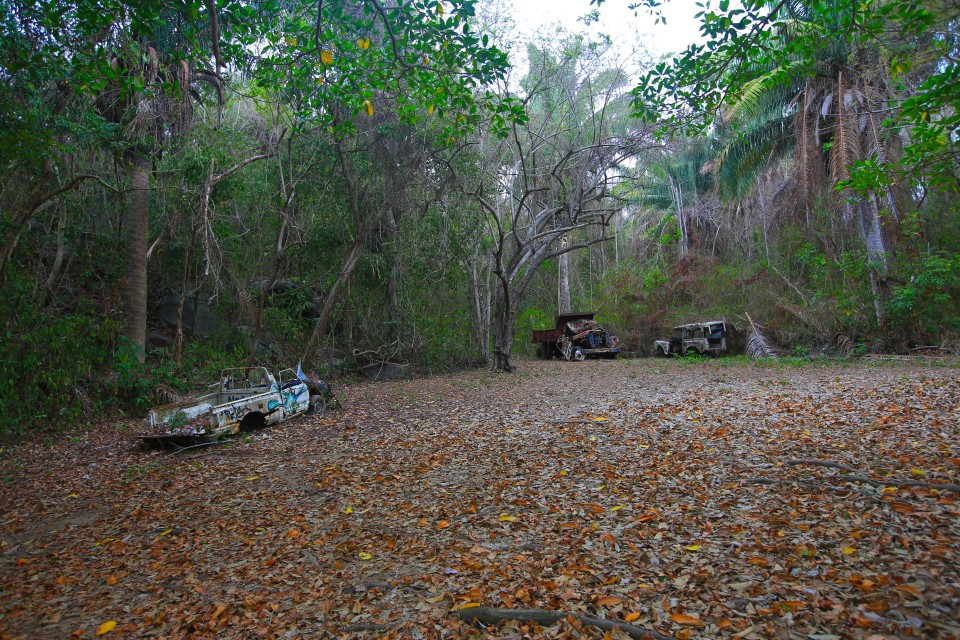 This was our campsite at Tayrona. It was actually really great and there were bathrooms and showers near by. I called it the car grave yard campground.