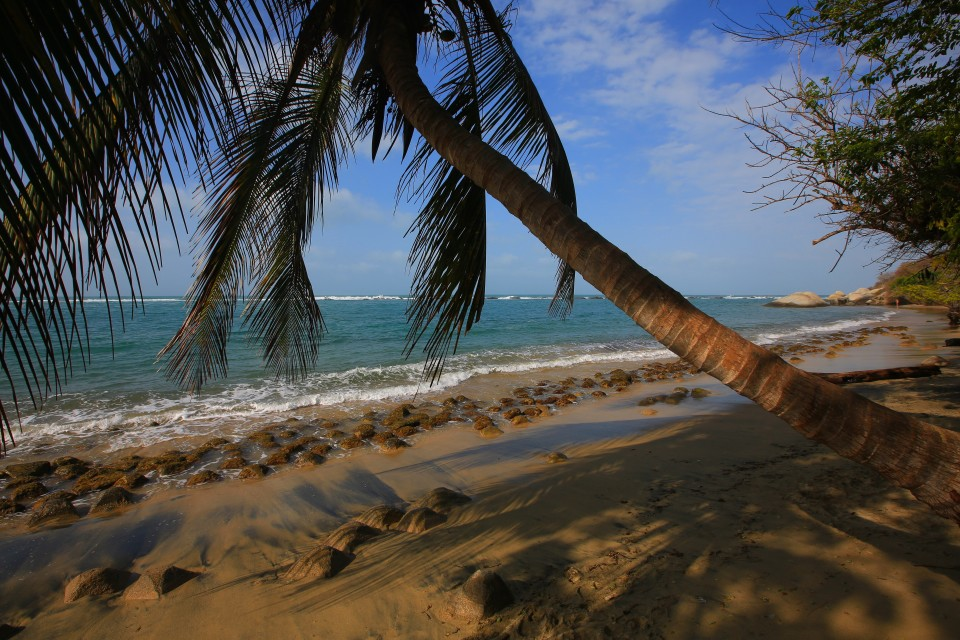 We spent a day in the shade of a palm tree at La Piscina, the first beach where it is very safe to swim.