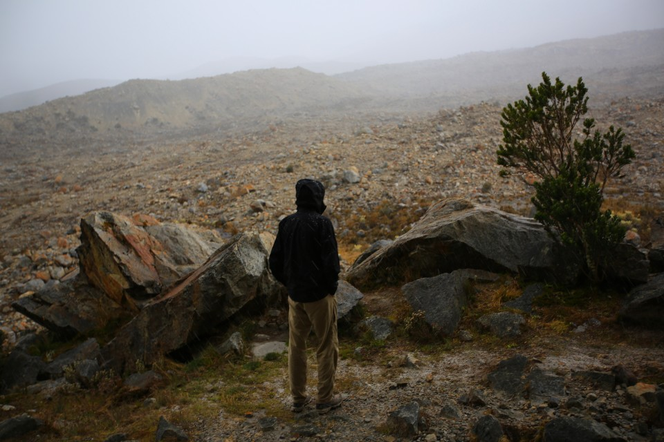 Sam looking out into the snow storm. Not my favorite weather to hike in.
