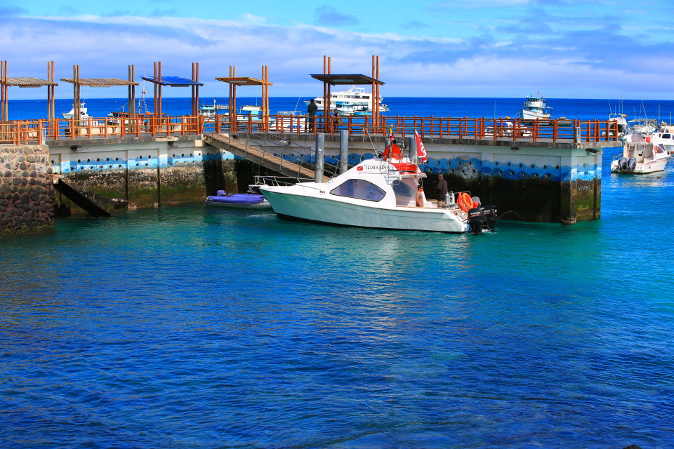The docks around the waterfront on San Cristobal. The water was so clear.