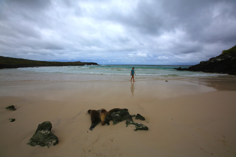Walking alone on yet another spectacular beach.