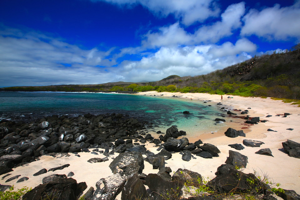 The beach where I was first snorkeled with sea lions and huge sea turtles.