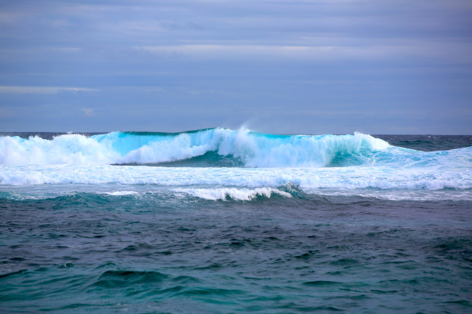 Huge waves but no surfers. It was so cold in the water, I don't blame them.