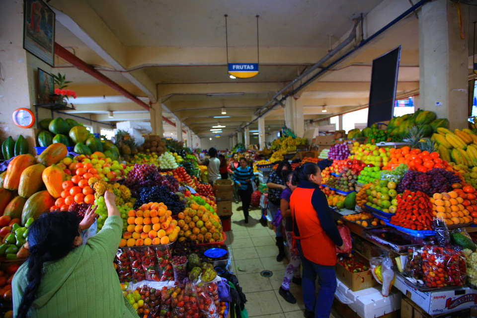 For about $10 USD, we were able to load up on all the beautiful produce available in this local market.