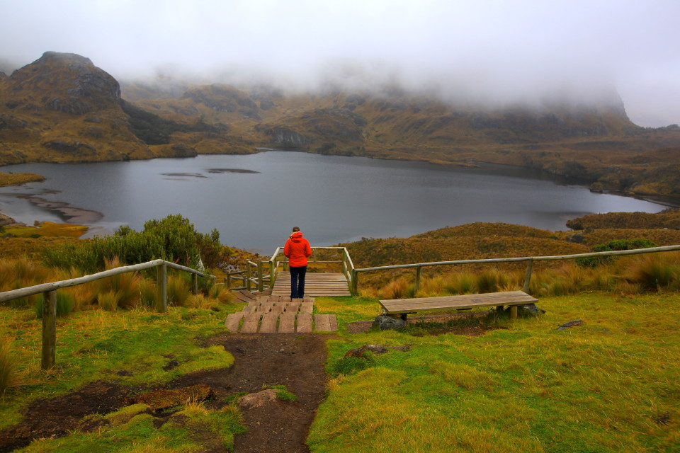 Erica heads down towards the laguna for our rainy hike through El Cajas National Park.