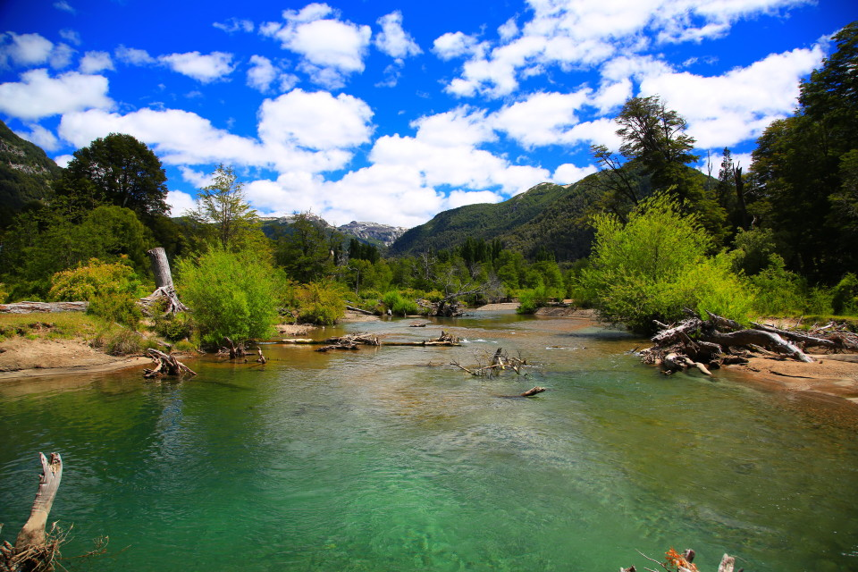 This is the river that fed the lake. Patagonia is so, so beautiful.
