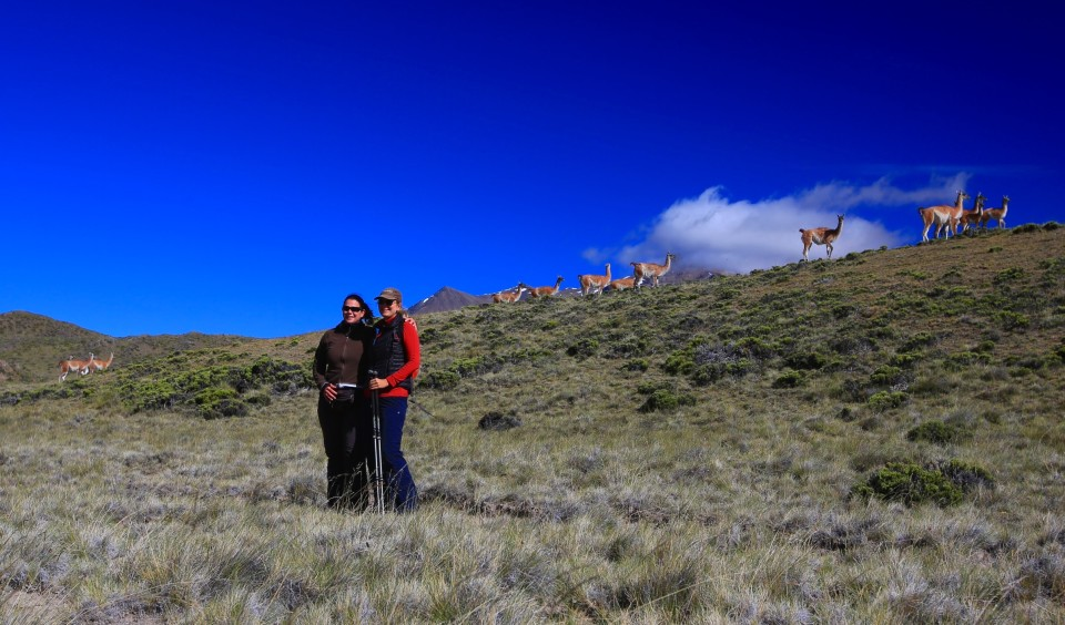 On the way up to the trail head Simone and I were photo bombed by a herd of guanacos.