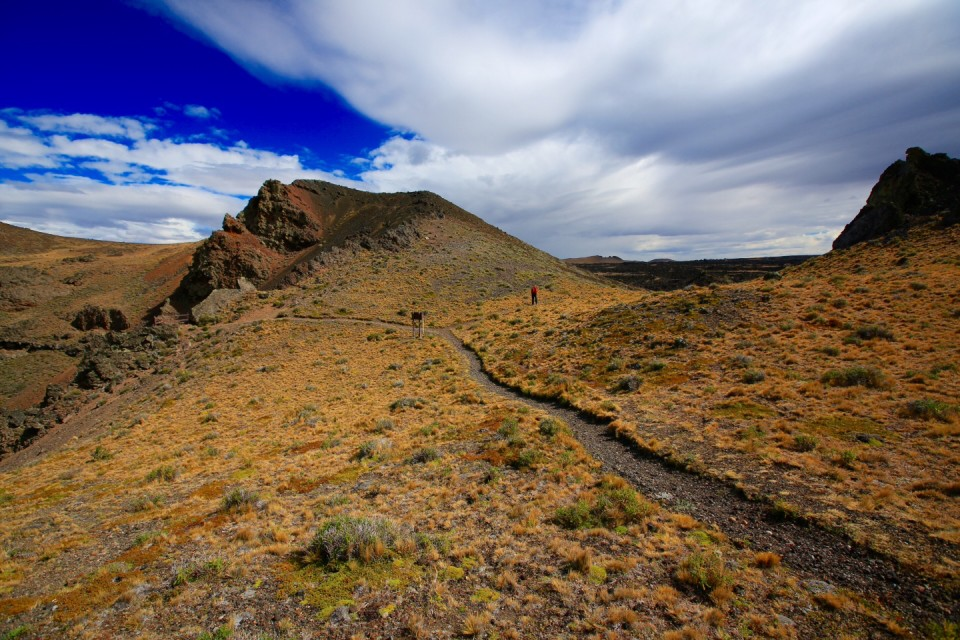 Many, many miles of hiking trails through the lava fields.